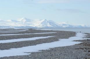 Svalbard 1 (AntonioAlcami_CSIC)