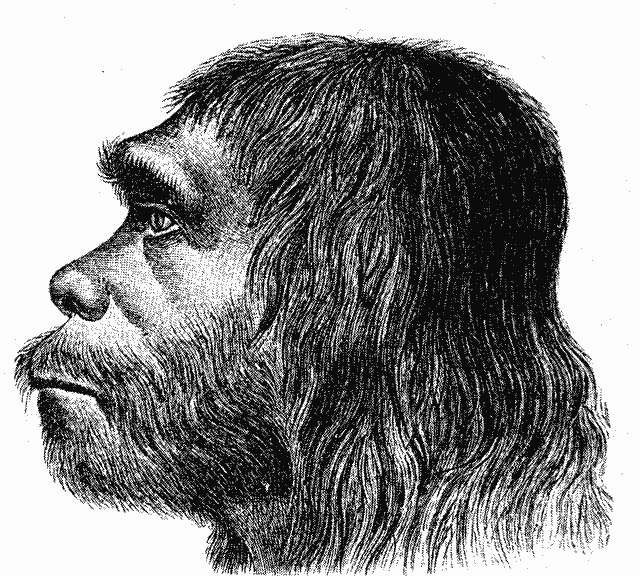 hombre-de-neanderthal